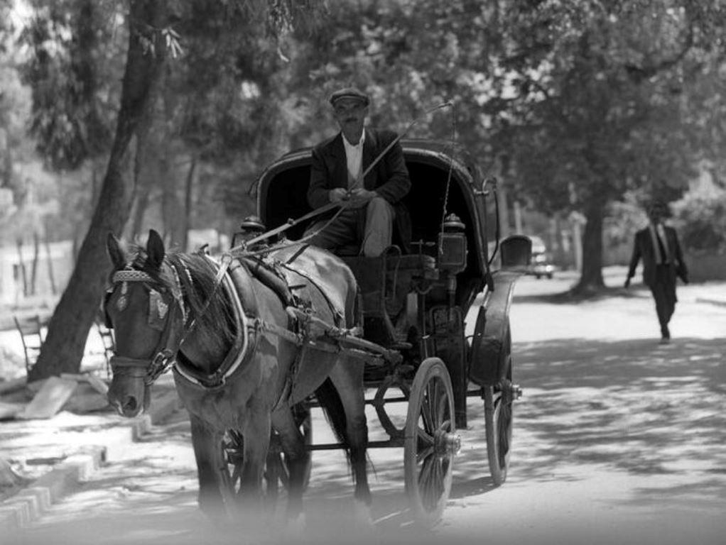 Ο πρώτος ΚΟΚ στην Ελλάδα για τις μετακινήσεις με ζώα- Ποιοι ήταν οι  οδοφύλακες και ποιοι είχαν προτεραιότητα - TheCaller